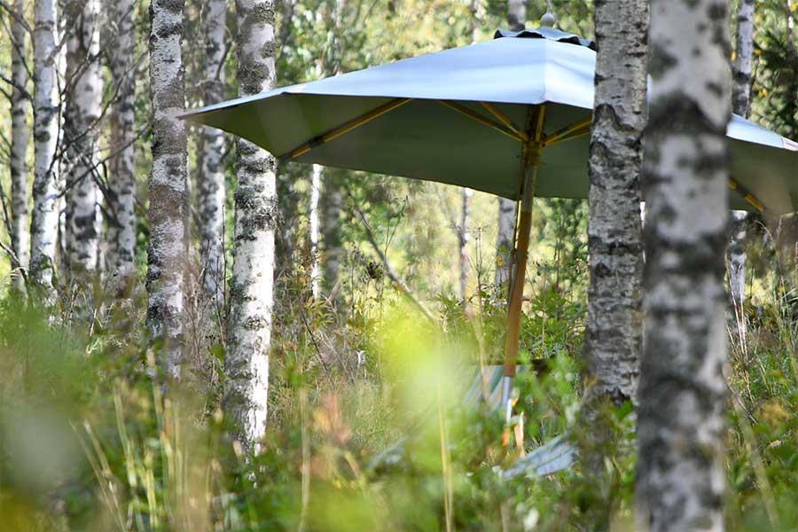 Ihana lepopaikka metsässä